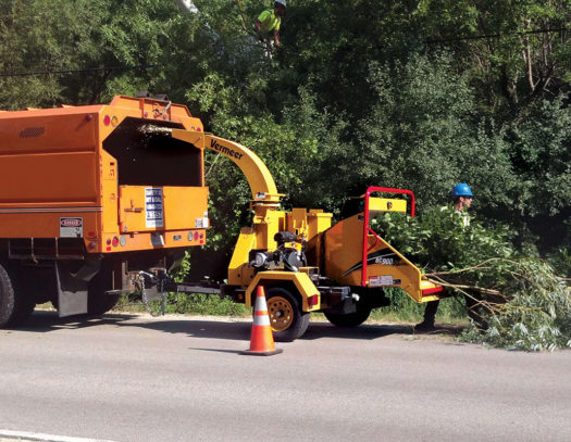 Commercial Tree Services-South Florida Tri-County Tree Trimming and Stump Grinding Services-We Offer Tree Trimming Services, Tree Removal, Tree Pruning, Tree Cutting, Residential and Commercial Tree Trimming Services, Storm Damage, Emergency Tree Removal, Land Clearing, Tree Companies, Tree Care Service, Stump Grinding, and we're the Best Tree Trimming Company Near You Guaranteed!